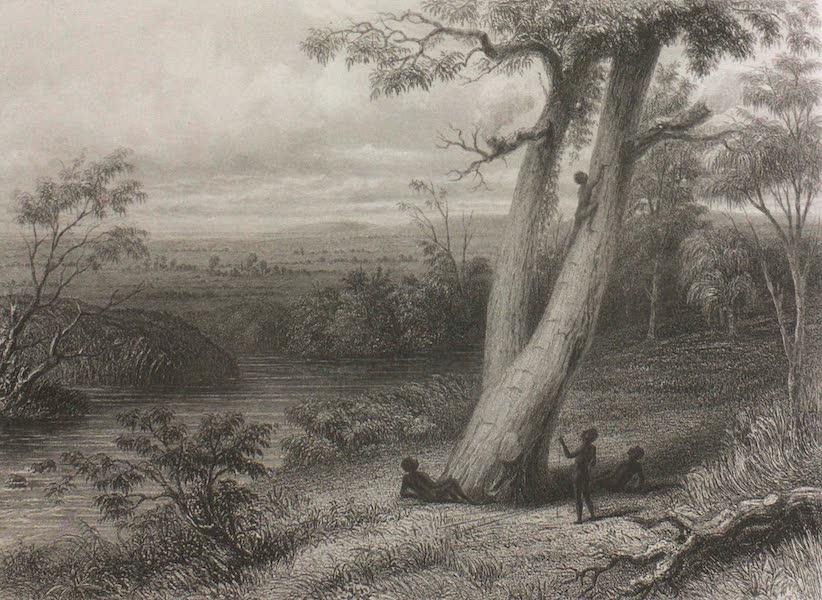 Australia Vol. 1 - The Gwalor Plains (1873)