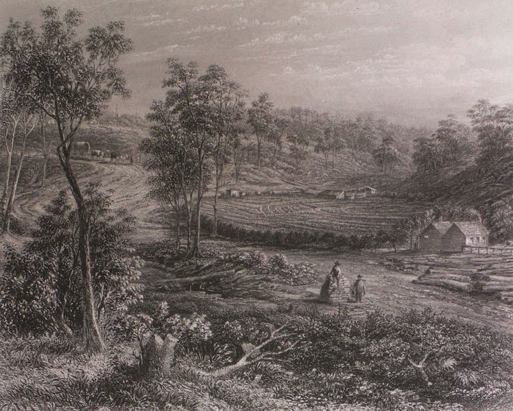 Australia Vol. 1 - A Chinese Garden in Victoria (1873)