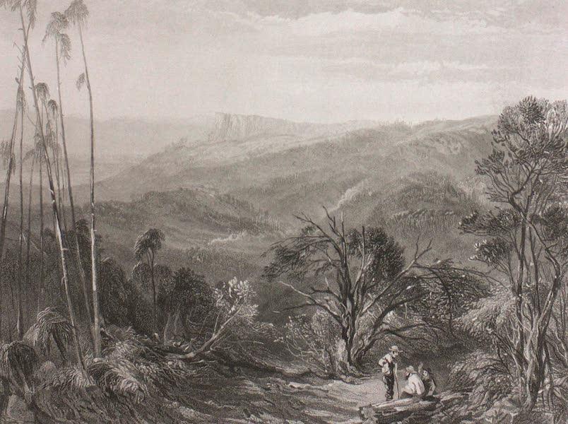 Australia Vol. 1 - The Dandenong Ranges, Victoria (1873)