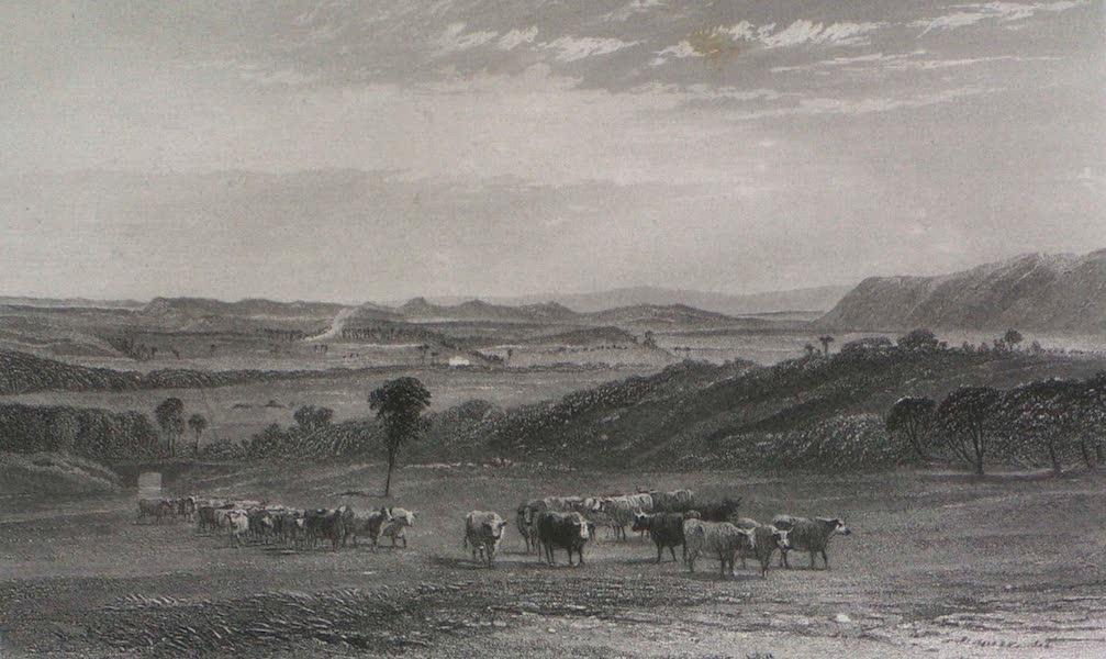 Australia Vol. 2 - The Cow Pastures, New South Wales (1873)