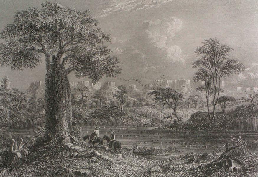 Australia Vol. 2 - Baines River, Northern Australia (1873)