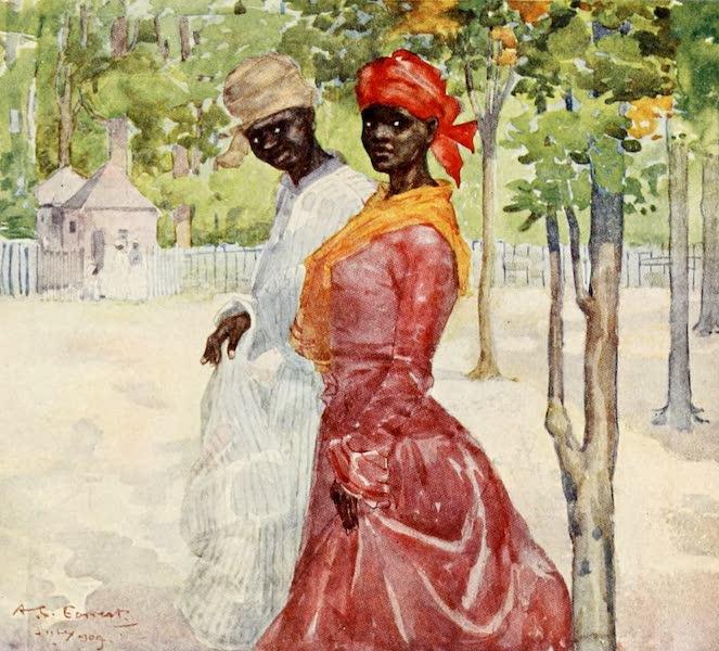 Back to Sunny Seas - Coloured Coquettes (1905)