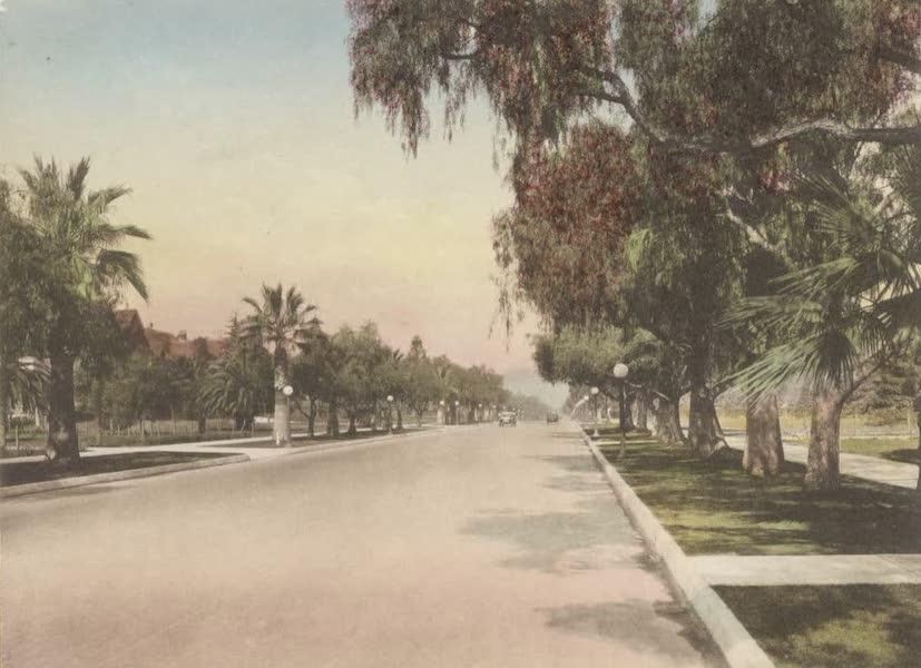 Beautiful Pasadena California - Orange Grove Avenue (1920)