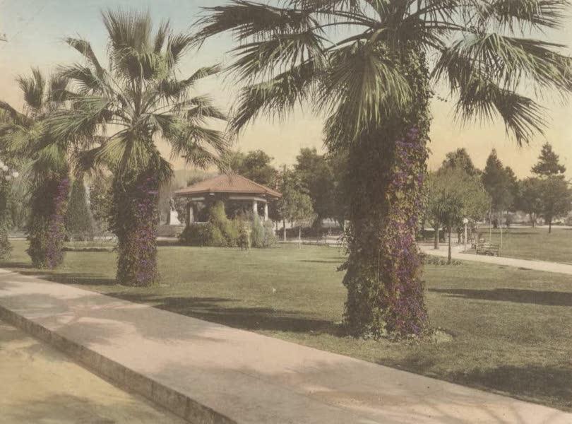 Beautiful Pasadena California - Library Park (1920)