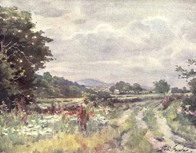 Beautiful Wales Painted and Described - Country Lane (1905)