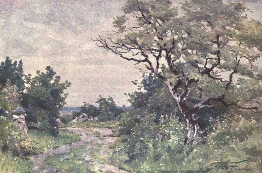 Beautiful Wales Painted and Described - Field Path, near Llanrug (1905)