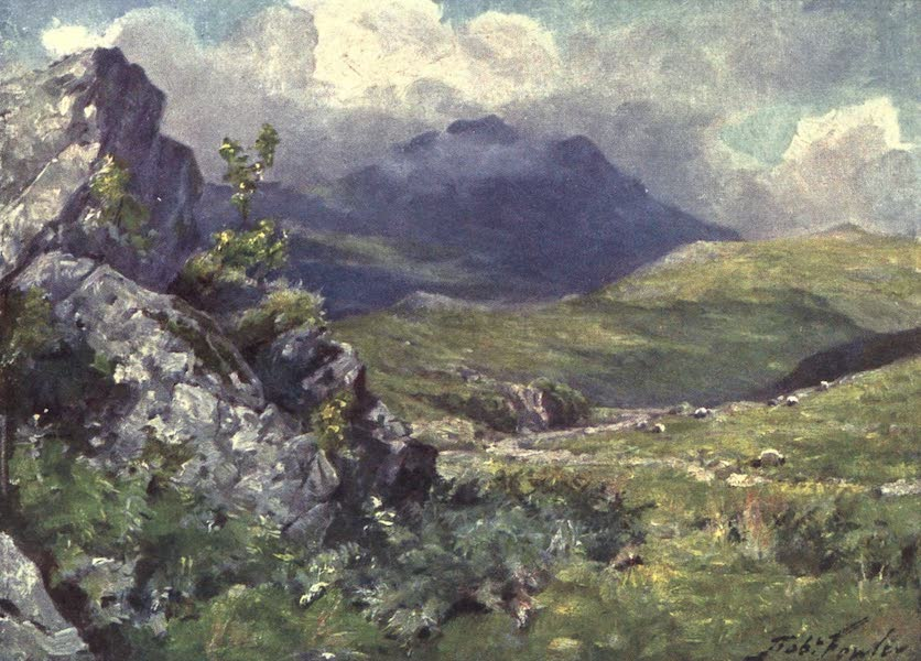 Beautiful Wales Painted and Described - View of Moelwyn (1905)