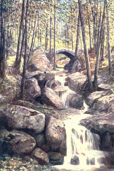Belgium, Painted and Described - Pont du Prophete, Promenade Meyerbeer. Spa Woods (1908)