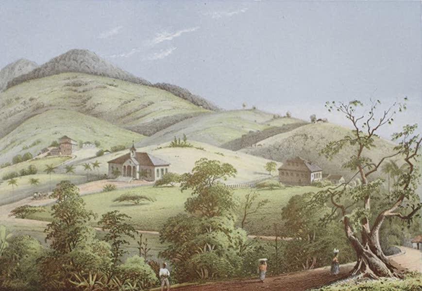 Bilder ans Westindien - Friedenstal auf St. Croix (1861)