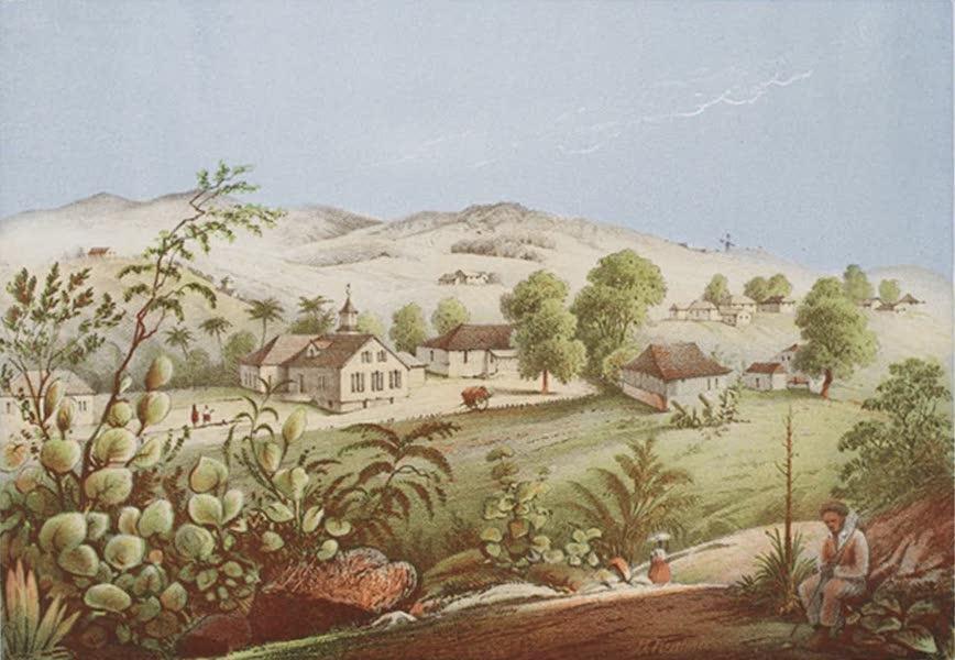 Bilder ans Westindien - Newfield, Antigua (1861)
