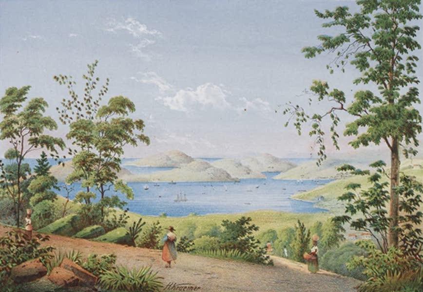Bilder ans Westindien - St. Thomas, der Hafen und Nische (1861)