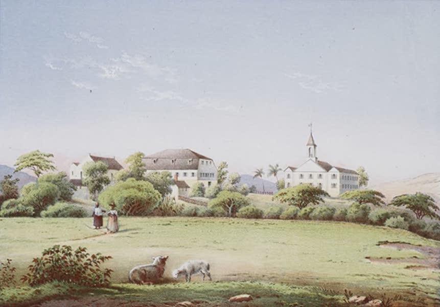 Bilder ans Westindien - Friedensfeld auf St. Prix (1861)