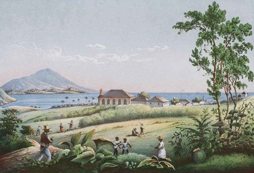 Bilder ans Westindien - asseterre auf St. Kitts (1861)