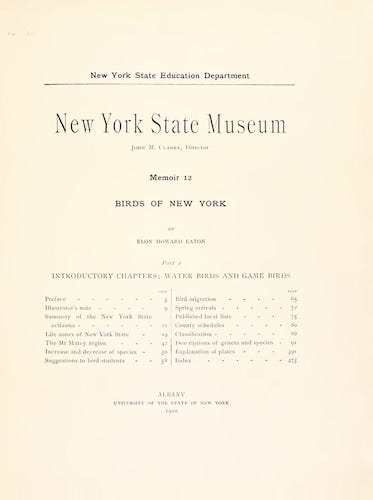 English - Birds of New York Vol. 1