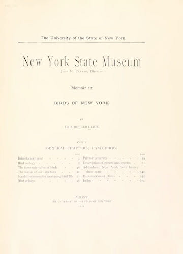 English - Birds of New York Vol. 2