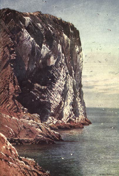 Bonnie Scotland Painted and Described - The Bass Rock, Firth of Forth, off Coast of Haddingtonshire (1912)