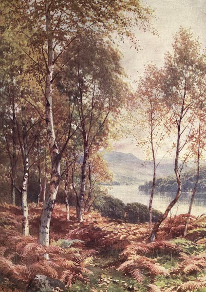 Bonnie Scotland Painted and Described - Birches by Loch Achray, Perthshire (1912)