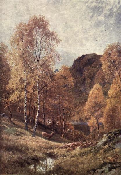 Bonnie Scotland Painted and Described - Golden Autumn, the Trossachs, Perthshire (1912)
