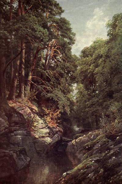 Bonnie Scotland Painted and Described - A Wooded Gorge, Killin, Perthshire (1912)
