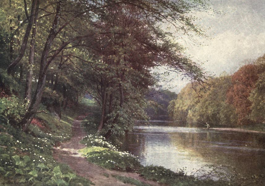 Bonnie Scotland Painted and Described - On the River Ayr, Ayrshire (1912)