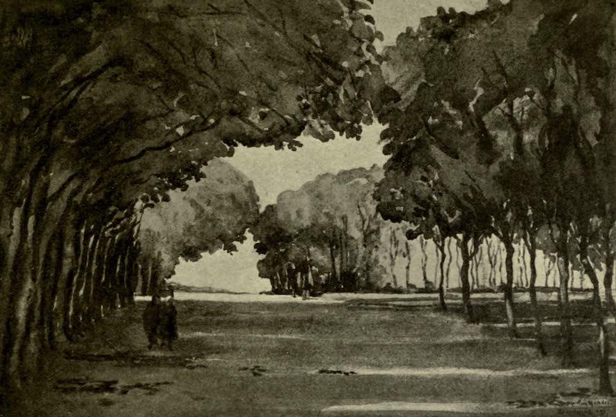 Boulogne, a Base in France - The Avenue near the Napoleon Column (1918)