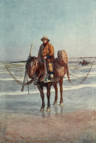 Bruges and West Flanders, Painted and Described - Coxyde : A Shrimper on Horseback (1906)