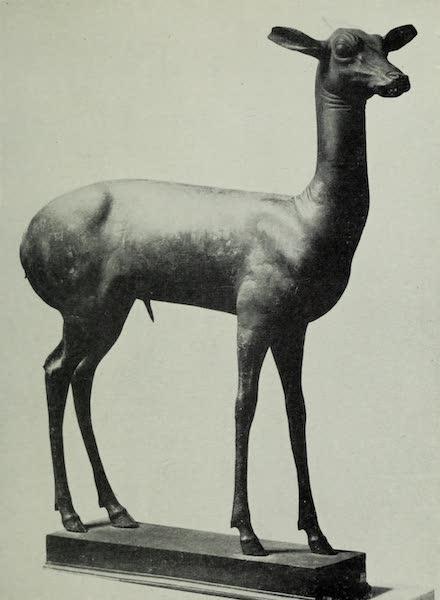 Buried Herculaneum - A Gazelle (1908)