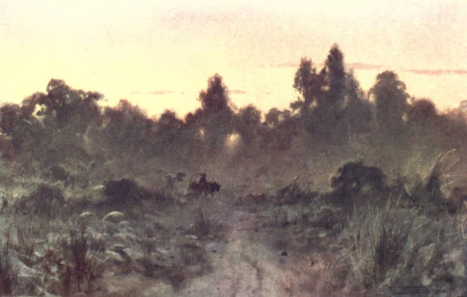 Burma, Painted and Described - Dawn in the Forest (1905)