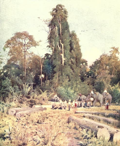 Burma, Painted and Described - Loading Teak at Kokogon (1905)