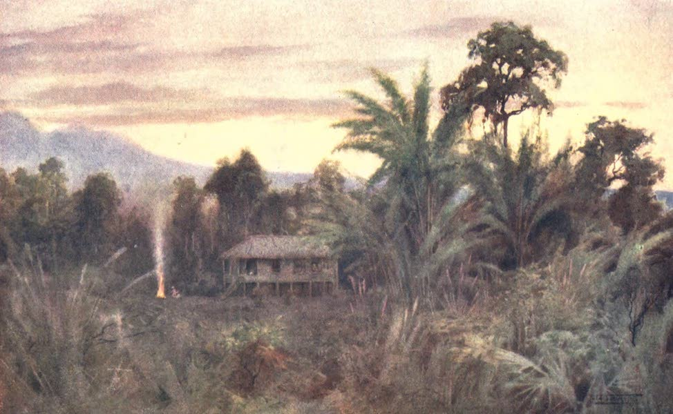 Burma, Painted and Described - A Forest Tai (1905)