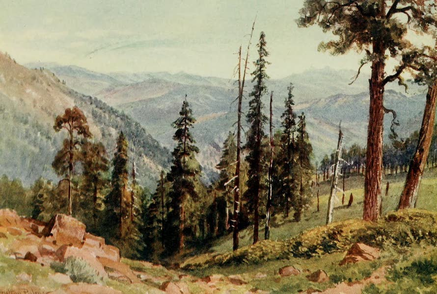 California : The Land of the Sun - Among the Redwoods of the Great Twin Valleys (1914)