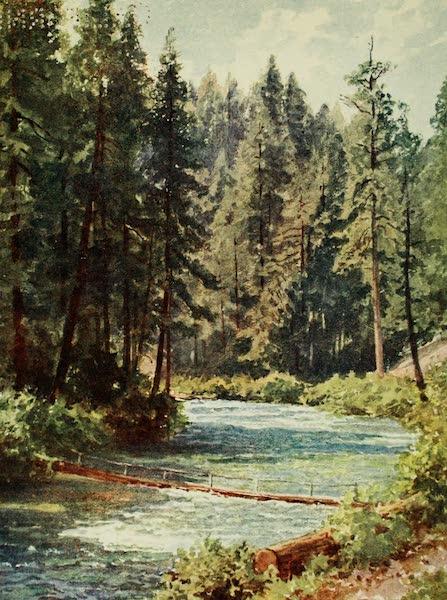 California : The Land of the Sun - McCloud River, Upper Sacramento Valley (1914)