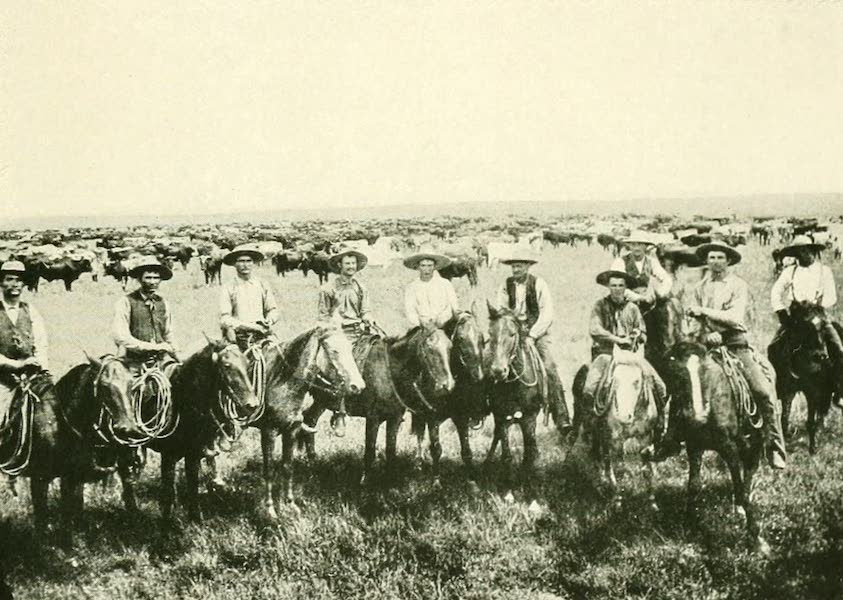 California the Wonderful - Cattle and Cowboys (1914)