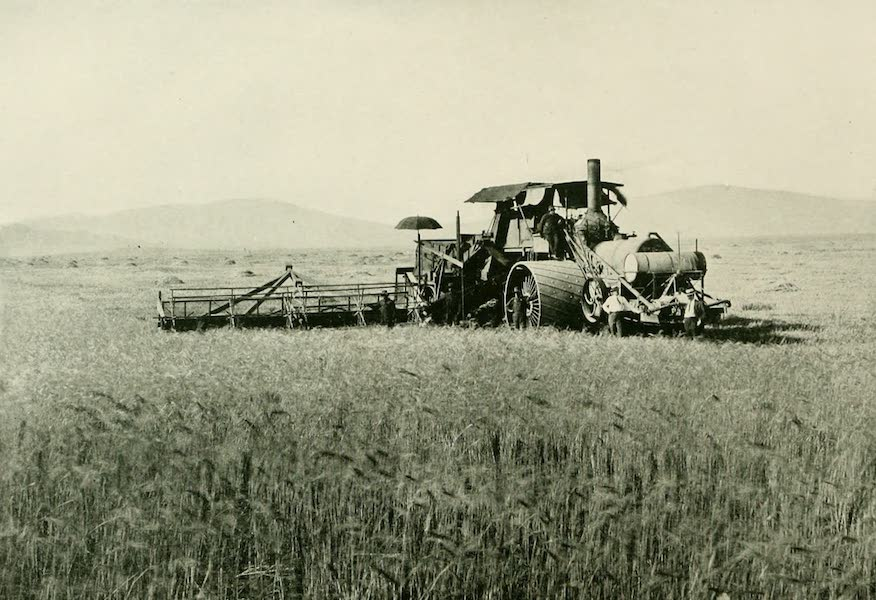 California the Wonderful - A thresher at work on a 17,000 acre wheat ranch (1914)