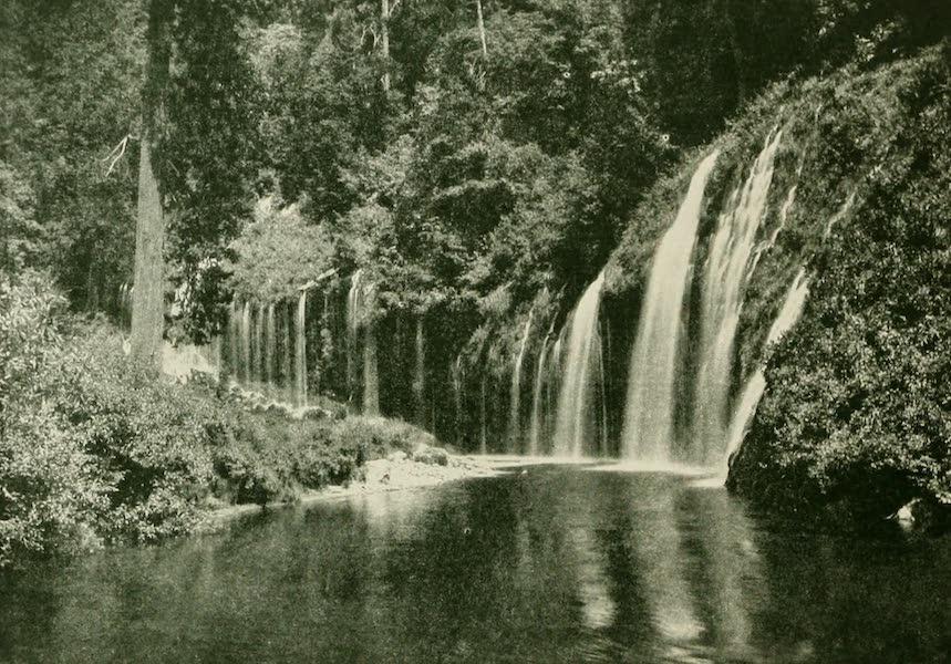 California the Wonderful - Mossbrae Falls, Shasta Springs (1914)