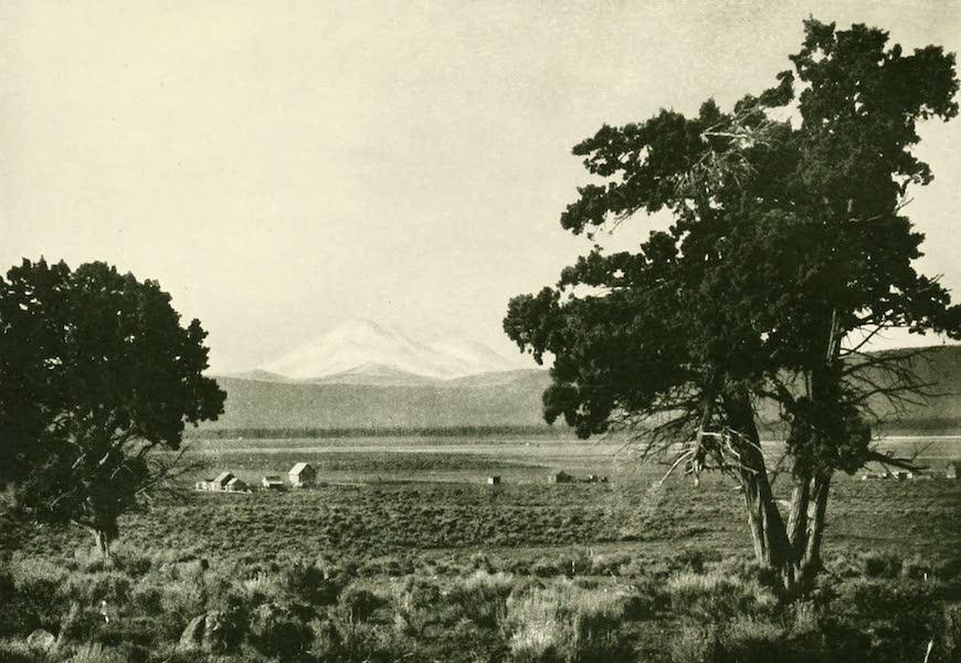 California the Wonderful - Mt. Shasta, the wonder of the Sacramento Valley (1914)