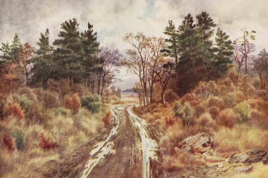 Canada, Painted and Described - Road near the Bay of Fundy, Autumn (1907)