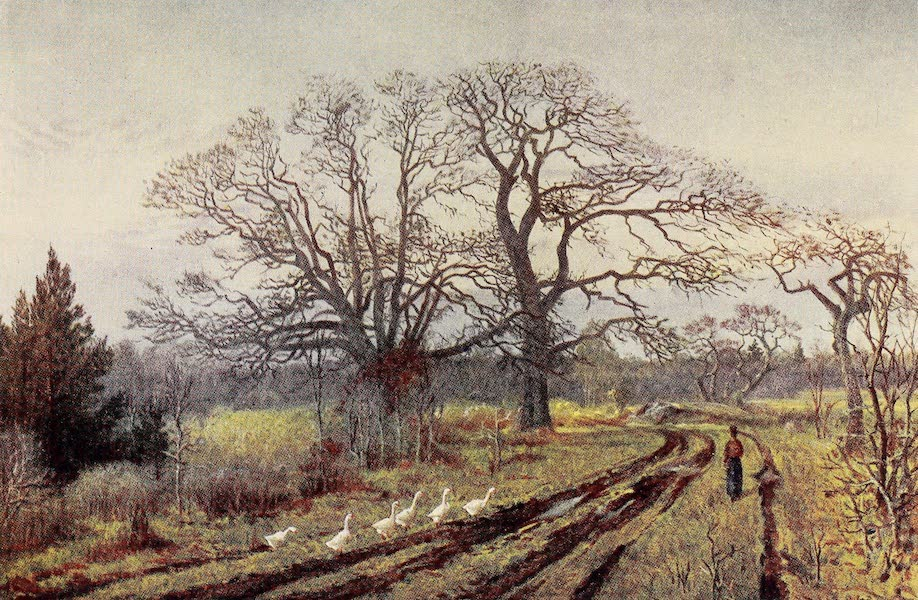 Canada, Painted and Described - Early Spring, near Victoria, British Columbia (1907)