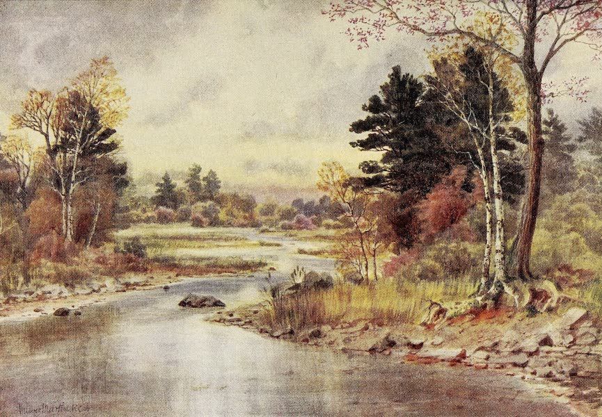 Canada, Painted and Described - Autumn in New Brunswick (1907)