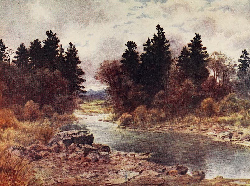 Canada, Painted and Described - Winter-Time in Vancouver Island, British Columbia (1907)