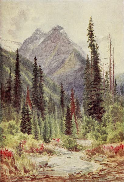 Canada, Painted and Described - Ross Peak, Selkirk Mountains, British Columbia (1907)