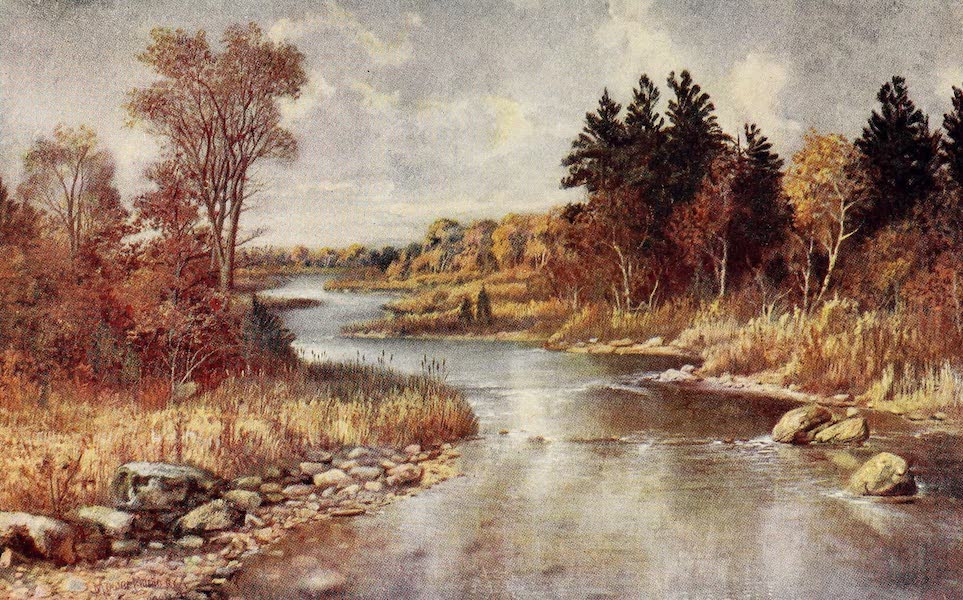 Canada, Painted and Described - In the Moose Country, near Lake Superior (1907)