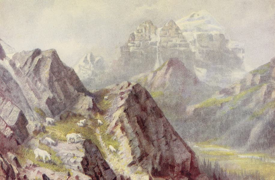 Canada, Painted and Described - Mount Temple, with Wild Goats Feeding (1907)