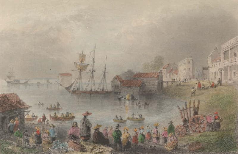 Canadian Scenery Illustrated: Volume 1 - Fish Market Toronto (1865)