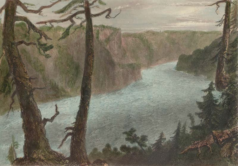Canadian Scenery Illustrated: Volume 1 - The banks of the River Niagara (below the falls) (1865)