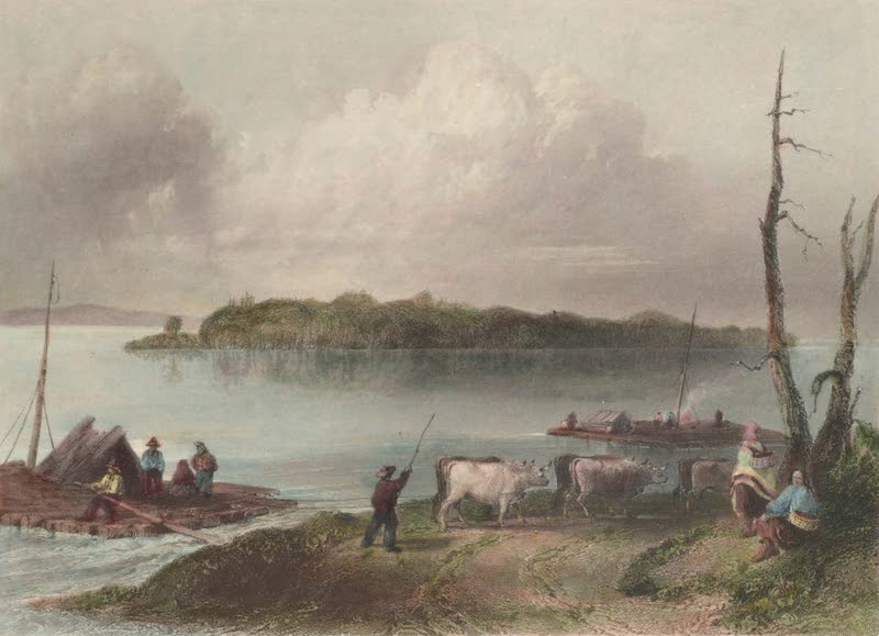 Canadian Scenery Illustrated: Volume 1 - Navy Island (from the Canada side) (1865)