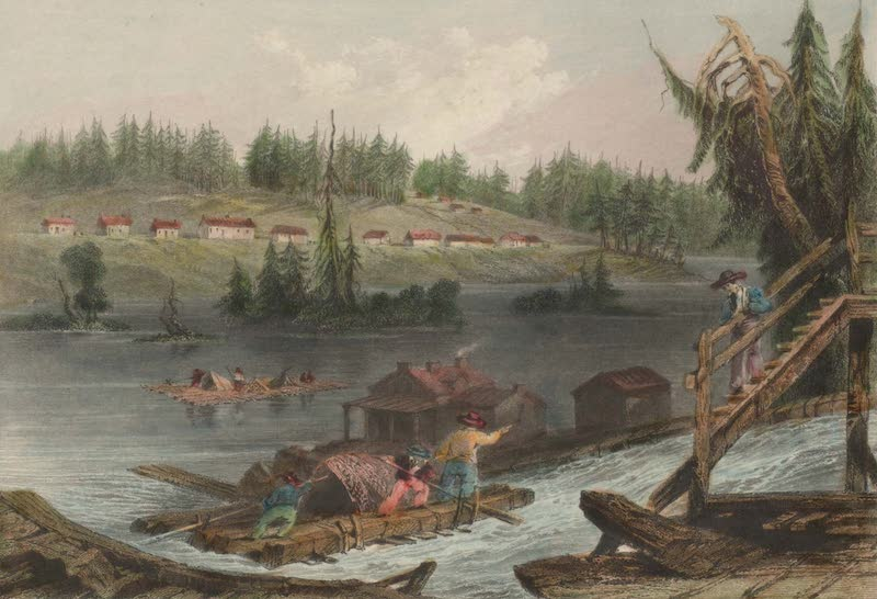 Canadian Scenery Illustrated: Volume 2 - Timber Slide at Les Chats (Upper Canada) (1865)