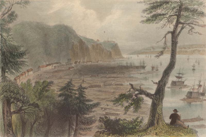 Canadian Scenery Illustrated: Volume 2 - Timber Depot near Quebec (1865)