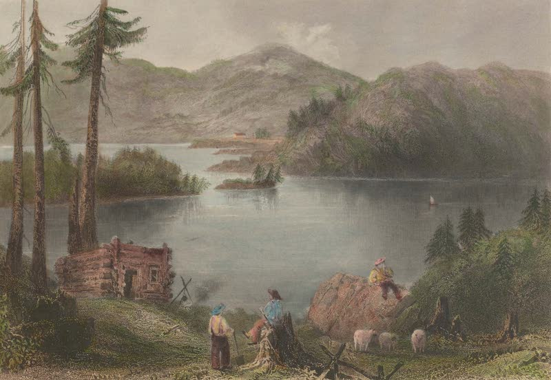 Canadian Scenery Illustrated: Volume 2 - A Settler's hut on the frontier (1865)