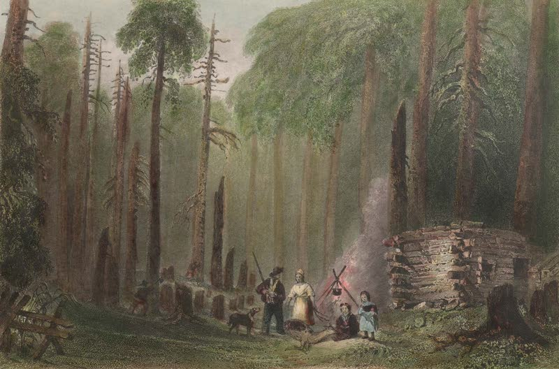 Canadian Scenery Illustrated: Volume 2 - A first Settlement (1865)